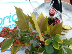 Caprice of Mykonos Christmas Mood, Xmas, G Photos, Event Styling, Mistletoe, Mykonos, Event Decor, Liquor, Greece