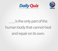 Win-Win Quiz! Health Quiz, Human Body, Healing, The Human Body, Therapy, Recovery