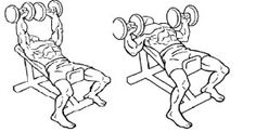 Dumbbell Incline Bench Press | http://mygymlife.com/how-to-perform/dumbbell-incline-bench-press