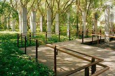 Parque da Juventude, São Paulo, 2003-2005. Paisagismo de Rosa Kliass