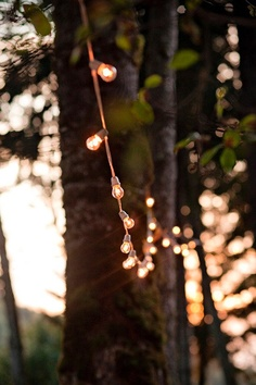 Festoon style wedding lights - itching these have more style than typical small white lights