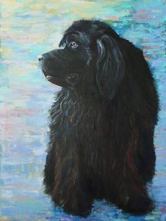 #Newfoundland #Newfie #NewfoundlandArt Dog Paintings, Original Paintings, Original Art, Turquoise Background, Cute Backgrounds, Newfoundland, Large Dogs, Artwork Online, Buy Art