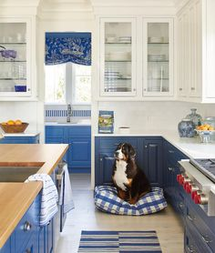 """6,146 Likes, 83 Comments - Coastal Living (@coastal_living) on Instagram: """"Rich royal blue cabinets aren't the only showstopper in our Newport Idea House kitchen. Meet Mia,…"""""""