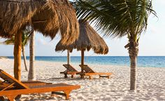 Excellence Playa Mujeres - Cancun - I'll be parked on one of those chairs in just a couple months!