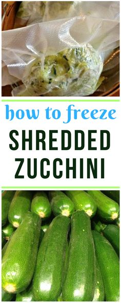 Gardening Vegetable step by step tips on freezing zucchini for winter baking. - Frozen shredded zucchini works wonderfully in baked muffins, breads, and other treats. Here's how I squirrel away a winter's worth of shredded zucchini. Freezing Fruit, Freezing Vegetables, Fruits And Veggies, Freezing Celery, Freezer Cooking, Freezer Meals, Cooking Tips, Cooking Bacon, Preserving Food