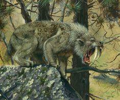 Smilodon por Todd Marshall