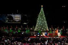 Barack, Michelle, Sasha, Malia, Rico Rodriguez, and Neil Patrick Harris Light the National Christmas Tree