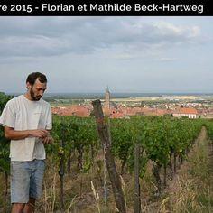 Florian BECK-HARTWEG nous présente ses vignes, Dambach-la-ville, et nous parle de ses terroirs et leur transcription dans ses vins #alsace #drinkalsace #dambach #vin #wine #terroir #sol #granit #macave #france