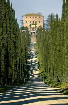 Everybody wants to visit the Toscana, Italy. The Tuscany boasts a proud heritage. left a striking legacy in every aspect of life. Sorrento Italy, Tuscany Italy, Italy Italy, Naples Italy, Venice Italy, Como Italy, Siena Toscana, Places To Travel, Places To See