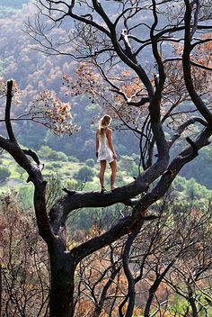 wicked, not sure what I like more...the tree climbing or the clothes