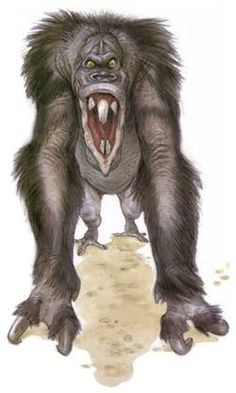 geek culture Veermoks were a ferocious species of clawed and fanged primates native to the planet of Naboo. A distinct subspecies lived on Eriadu, in the Outer Rim Territories.