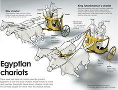 Infographics | Infographics | KarBel Multimedia