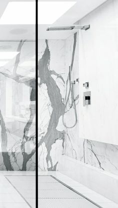 Schlesinger Associates Architects   Lassus Residence