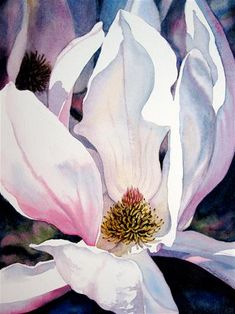"Daily Paintworks - ""Japanese Magnolia"" - Original Fine Art for Sale - © carolyn watson"