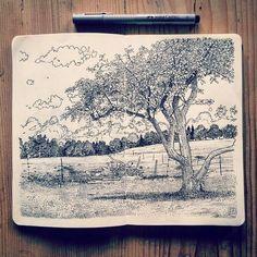 Resultado de imagen para drawings nature landscapes instagram