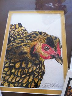 Gold laced cochin, pen and ink, by David Bahm.
