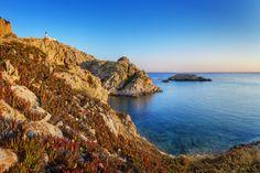 #Corse #IleRousse . Située dans la région de Balagne, l'île Rousse est une ancienne cité commerciale demeurant une destination très prisée grâce à ses restaurants, ses bars et ses pubs. Elle possède trois belles plages de sable fin, un record de températures parmi les plus chaudes et un arrière-pays époustouflant. Son marché couvert favorise les échanges autour de ses étales de poissons et de produits du terroir. http://vp.etr.im/ab8b