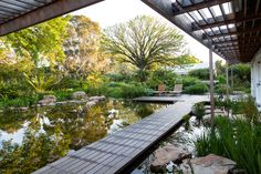 Protea Way - Heimo Schulzer GardensHeimo Schulzer Gardens Garden Types, Private Garden, Water Garden, Outdoor Furniture, Outdoor Decor, Carrie, Sun Lounger, South Africa, Swimming Pools