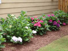 Examples of Geaslen Landscaping's residential and commercial landscaping services throughout the Triangle area.