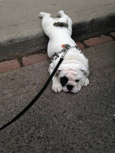 """I seem to have melted."" 