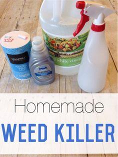 DIY-Weed-Killer.jpg
