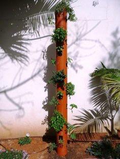 DIY : vertical garden