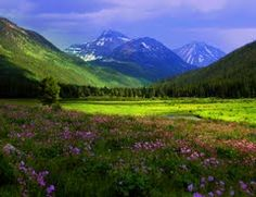 christmas meadows - Utah! I love this place