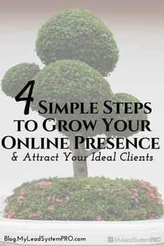 I can help you build your biz and create the online presence you are looking for!