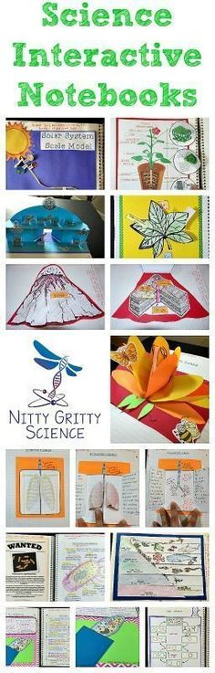 22 Trendy Ideas For Science Experiments For Middle School Projects Interactive Notebooks 4th Grade Science, Science Curriculum, Science Biology, Elementary Science, Middle School Science, Science Classroom, Science Lessons, Teaching Science, Science Education