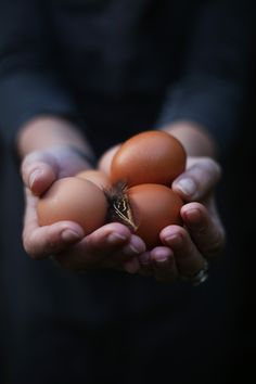 """Eggs…"""