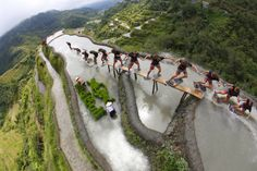 Tropical Dreams - Philippines: It's true - no joke!  Wakeskate the Banaue Rice Terraces Philippines... (Brain Grubb for Red Bull)