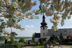 Nierstein, Sankt Kilian Kirche und Friedhof (St. Kilian's church and cemetery) by HEN-Magonza, via Flickr