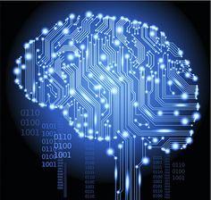 Why Every Company Needs a Digital Brain