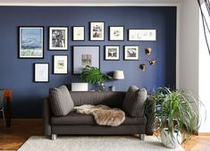 Dark blue wall paint for the living room. Blue Painted Walls, Dark Blue Walls, Fold Down Beds, Navy Living Rooms, House Lamp, Cool Curtains, Blue Color Schemes, Moving House, Living Room Inspiration