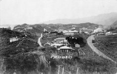 The township of Paekakariki, Kapiti Coast, in Shows houses, a railway line, and a train approaching. The Hutt, Old Pictures, New Zealand, Coast, Places, Trains, Towel, Channel, March