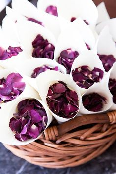 125+ ideas for a purple wedding color palette. Just pick your colors then look at the ideas!