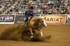 Shiny and Bright Stallion and Lyle Lovett - Google Search Lyle Lovett, Pole Bending, Reining Horses, Western Riding, Barrel Racing, Cowboys, Westerns, Bright, Google Search