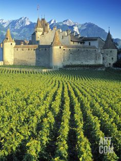 Top Places To Travel In Switzerland.Switzerland has it all. An overview of the top places to visit in switzerland. Places Around The World, Oh The Places You'll Go, Places To Visit, Around The Worlds, Chateau Medieval, Medieval Castle, Medieval Fortress, Beautiful Castles, Beautiful Places
