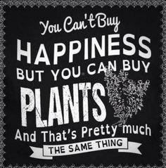 Trendy Plants Quotes So True Ideas Plants Quotes, Buy Plants, Flower Quotes, Flower Sayings, Flower Puns, Modern Landscaping, Dream Garden, Garden Inspiration, Outdoor Gardens