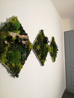 Plant Wall, Triptych, Herbs, Crafty, Amazon Fr, Handmade Gifts, Plants, Etsy, Vintage