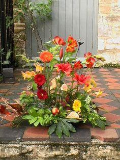 Vegetative Arrangement outdoors/indoors * Petra Stahly * NVQ3 Floristry * 26/10/07 - Pete Stahly - Picasa Web Albums