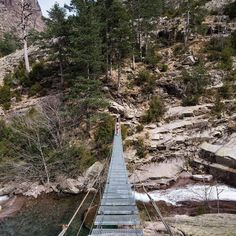 We came across this beautiful hanging bridge while hiking #Corsica Re-post by Hold With Hope