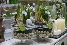♥ ~ ♥ Spring into Easter ♥ ~ ♥ Easter Flower Arrangements, Easter Flowers, Floral Arrangements, Happy Easter, Easter Bunny, Easter Eggs, Easter Projects, Easter Crafts, Easter Parade