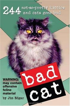 Bad Cat Book makes a funny stocking stuffer for cat moms and dads. The book is filled with funny photos and stupid cat humor! From the article: Five Funny Gifts for Cat Lovers: http://www.squidoo.com/five-funny-gifts-for-cat-lovers  #cathumor #funnygiftideas