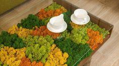 30 Indoor & Outdoor Moss Decorative Ideas Garden Decor