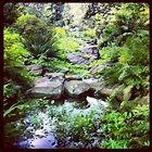 Pinterest Garden Ideas Rocks Photograph   Rock garden   Gard