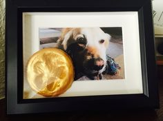 Altijd een mooi aandenken aan je huisdier! Pootafdruk in brooddeeg, schilderen en hupake kadertje in!