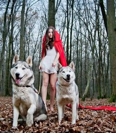 """""""Little Red Riding Hood"""" If I ever get my tamaskan, I will so do this. Perfect for halloween too!"""