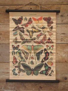 Wandkaart van canvas met  vlinders creme bruin 55x75x2 cm