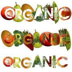 Матвиенко: органические сельхозпродукты могут стать второй нефтью